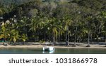 tropical beach in the dominican ... | Shutterstock . vector #1031866978