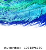 blue feathers. carnival. | Shutterstock . vector #1031896180