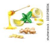 vector illustration of lemon ... | Shutterstock .eps vector #1031938036