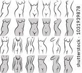 female torso in diferent poses  ...   Shutterstock .eps vector #1031939878