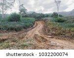rural road in the rainy season | Shutterstock . vector #1032200074