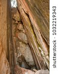brown beige wet texture | Shutterstock . vector #1032219343
