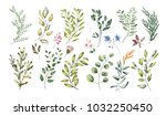 watercolor illustration. ... | Shutterstock . vector #1032250450