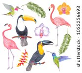 watercolor marker tropical bird ... | Shutterstock . vector #1032256693