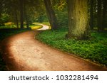 forest path in the magic forest | Shutterstock . vector #1032281494