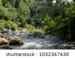 nature of bali | Shutterstock . vector #1032367630