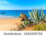 green agave plants on cliff and ... | Shutterstock . vector #1032435733