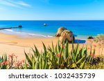 green agave plants on cliff and ... | Shutterstock . vector #1032435739