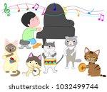 a cat's concert. a cat is...
