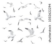 flock of flying seagulls. gulls ... | Shutterstock .eps vector #1032622294
