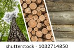 collage of deforestation and... | Shutterstock . vector #1032714850