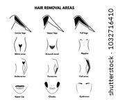 isolated illustrations of hair... | Shutterstock .eps vector #1032716410