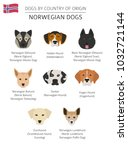 dogs by country of origin.... | Shutterstock .eps vector #1032721144