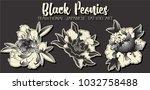 black peony tattoo art | Shutterstock .eps vector #1032758488