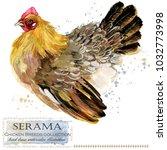 serama hen. poultry farming.... | Shutterstock . vector #1032773998