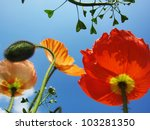 pretty flowers in the sky... | Shutterstock . vector #103281350