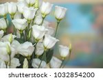 bouquet of white lisianthus... | Shutterstock . vector #1032854200