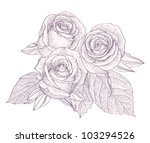 bouquet with three roses... | Shutterstock .eps vector #103294526