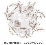 hand drawn outline vector... | Shutterstock .eps vector #1032947230