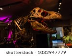 newcastle  england   february... | Shutterstock . vector #1032947779
