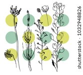 set of wild flowers | Shutterstock .eps vector #1032948826