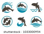 collection of fish icon with... | Shutterstock .eps vector #1033000954
