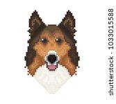 collie dog head in pixel art... | Shutterstock .eps vector #1033015588