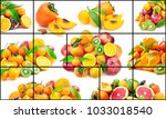isolated on white background...   Shutterstock . vector #1033018540
