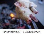 suckling pig roast at a... | Shutterstock . vector #1033018924