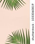 Green Palm Leaf On Pink...