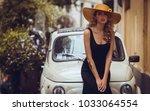 elegant portrait of beautiful... | Shutterstock . vector #1033064554