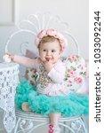 image of sweet adorable baby... | Shutterstock . vector #1033092244