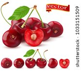 highly realistic vector ripe... | Shutterstock .eps vector #1033151509