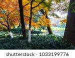 prince park in hangzhou park | Shutterstock . vector #1033199776