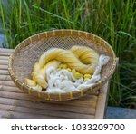 silk thread and silk worm... | Shutterstock . vector #1033209700
