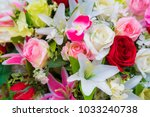 bouquet rose and multi color... | Shutterstock . vector #1033240738