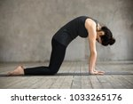 young woman practicing yoga ... | Shutterstock . vector #1033265176