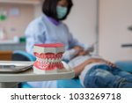 denture model placed on the... | Shutterstock . vector #1033269718