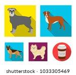 retriever  terrier  pomeranian  ...   Shutterstock .eps vector #1033305469