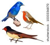 vector flat illustration of... | Shutterstock .eps vector #1033336870