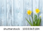 Stock photo spring background with yellow daffodils flowers on blue wood texture beautiful nature rustic 1033365184