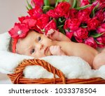 a baby girl in a red flower... | Shutterstock . vector #1033378504