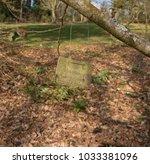 "plant identification label for ""... | Shutterstock . vector #1033381096"