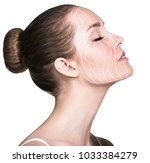 graphic lines showing facial... | Shutterstock . vector #1033384279