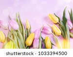 pink tulips flowers  for march... | Shutterstock . vector #1033394500
