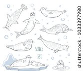 cute vector set of seals sketch.... | Shutterstock .eps vector #1033397980