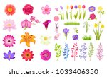 set of different flowers  color ... | Shutterstock .eps vector #1033406350