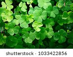 Background Green Shamrock ...