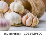 garlic cloves and bulb for food ... | Shutterstock . vector #1033429600