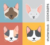 illustration of cats collection | Shutterstock . vector #1033436896
